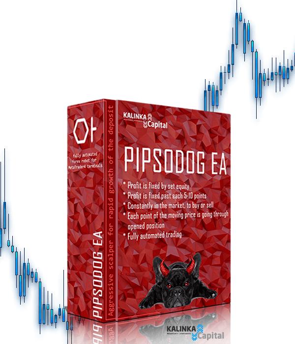Форекс скальпер pipsodog видео курсы форекс онлайн